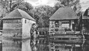 Water Mill Den Helder